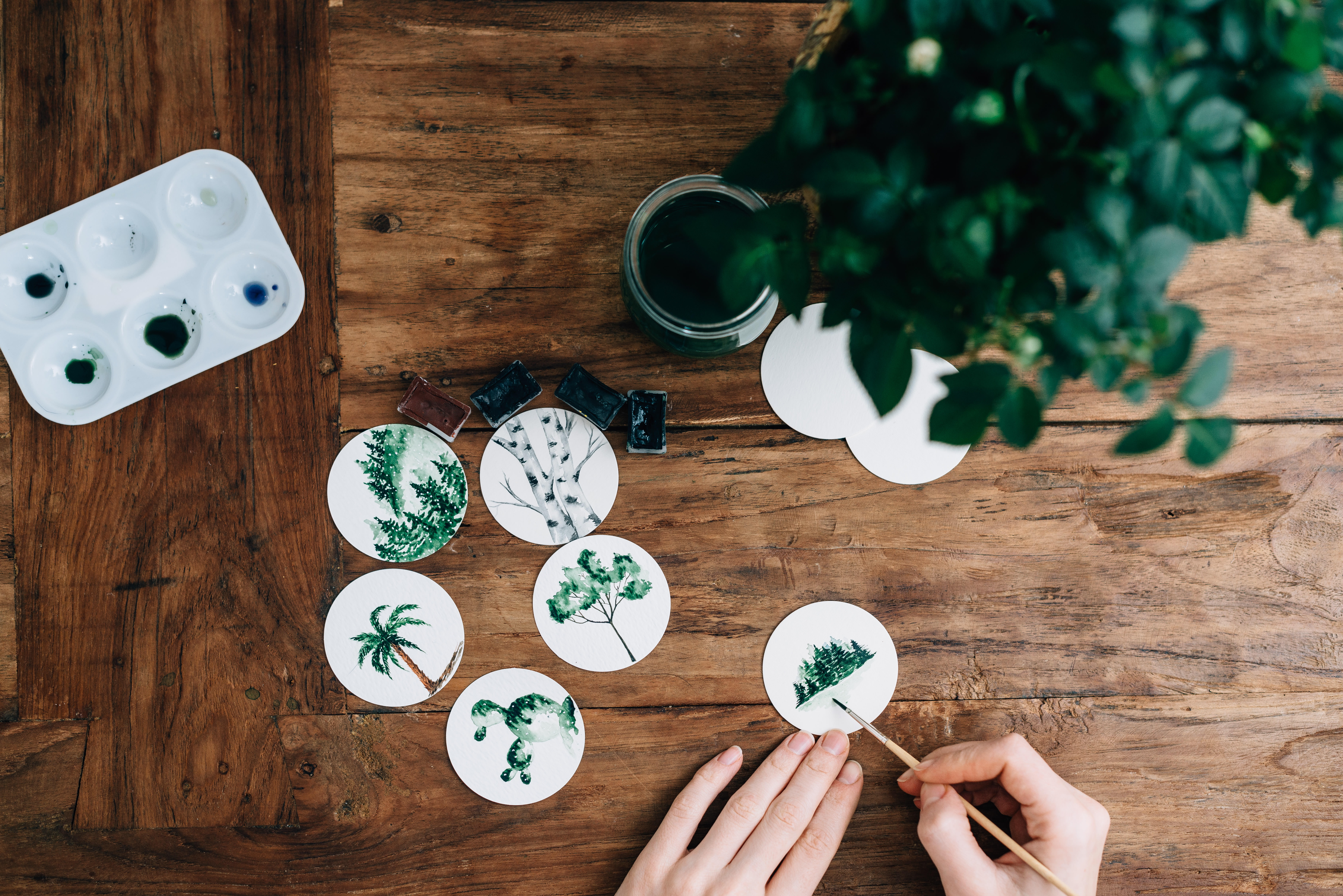 On a wooden table, a woman paints leafy plants on white disks with green paint.