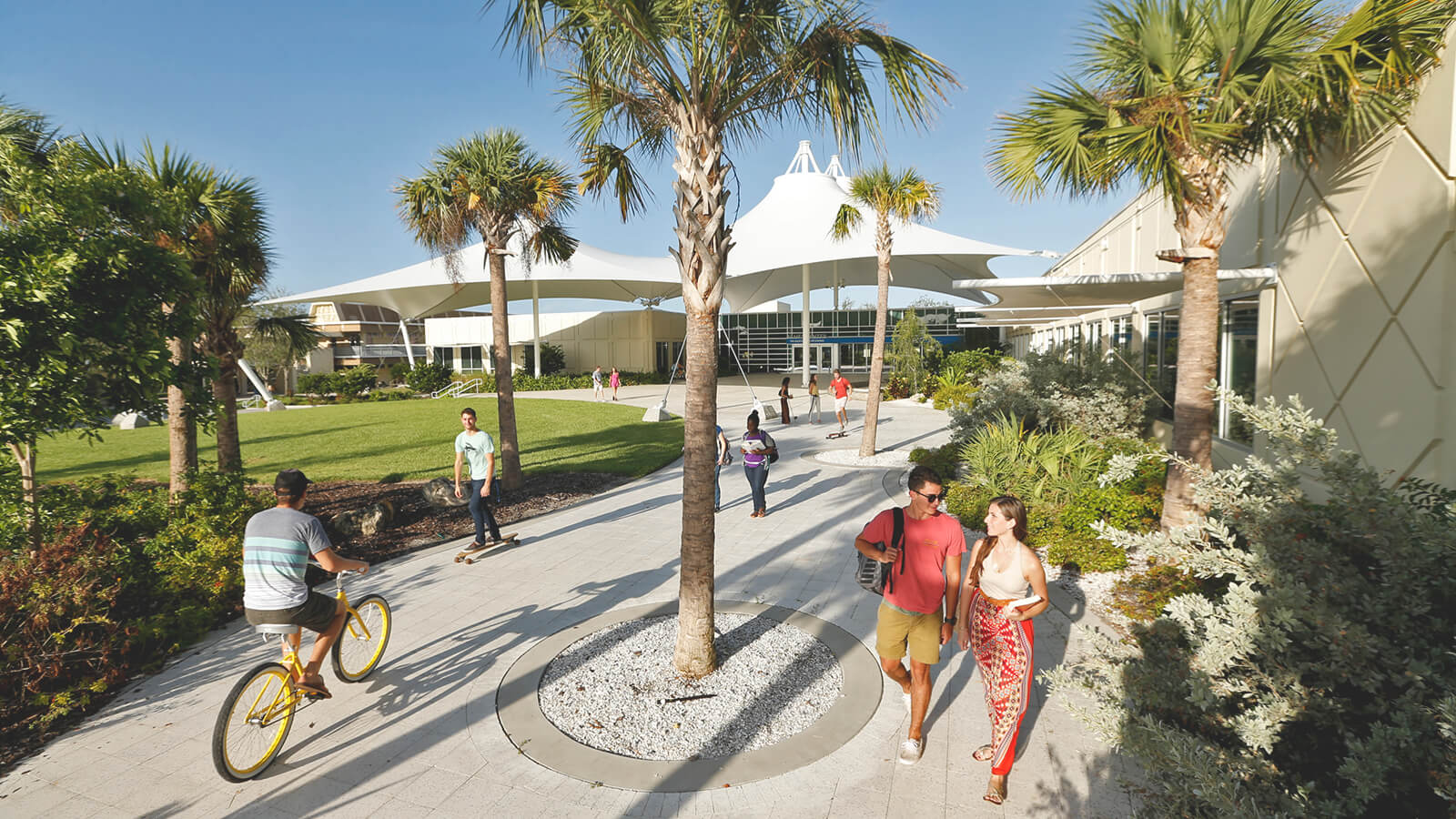 A view of a bustling campus at Eckerd College.