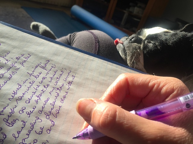 Dog snoozes while owner writes in notebook.